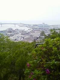 P2011_0601_100844.JPG