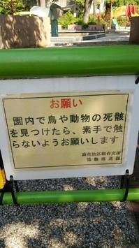 狸穴公園3.jpgのサムネール画像